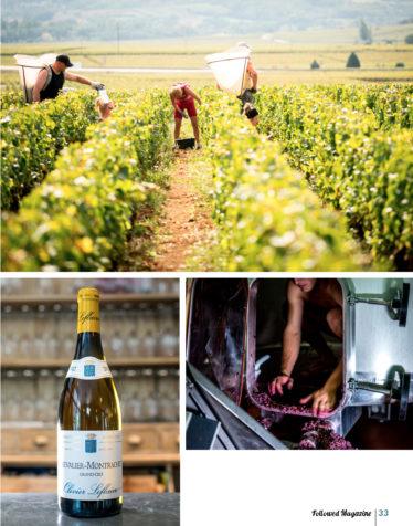FOLLOWED AVRIL 2020 Un an en Bourgogne_Page_04