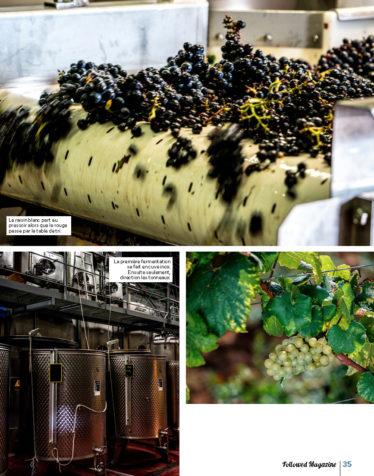 FOLLOWED AVRIL 2020 Un an en Bourgogne_Page_06
