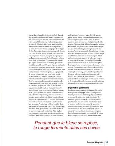 FOLLOWED AVRIL 2020 Un an en Bourgogne_Page_08