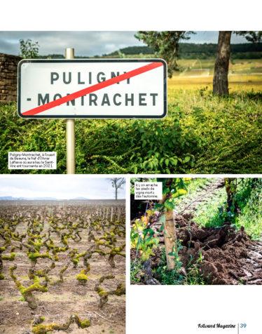 FOLLOWED AVRIL 2020 Un an en Bourgogne_Page_10