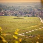 Village de Bourgogne